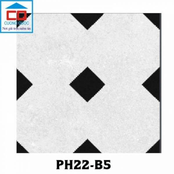 gach-bong-gach-decor-viglacera-platinum-ph22-b5-20x20
